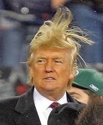 TrumpHairTakeoff